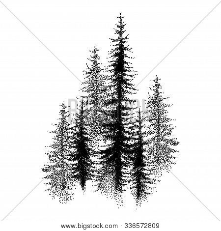 Vector Dotted Spruce Tree Or Coniferous Forest In Black Isolated On White Background. Dotted Group O