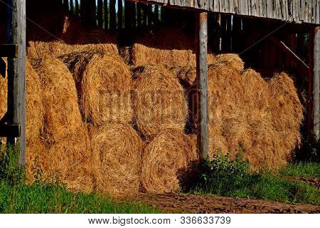 Dry Baled Hay Bales Stack, Rural Countryside Straw Background. Hay Bales Straw Storage Shed Full Of