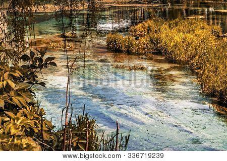 Bright And Colorful Lake Vegetation In The Italian Nature Reserve Of Posta Fibreno In The Lazio Regi
