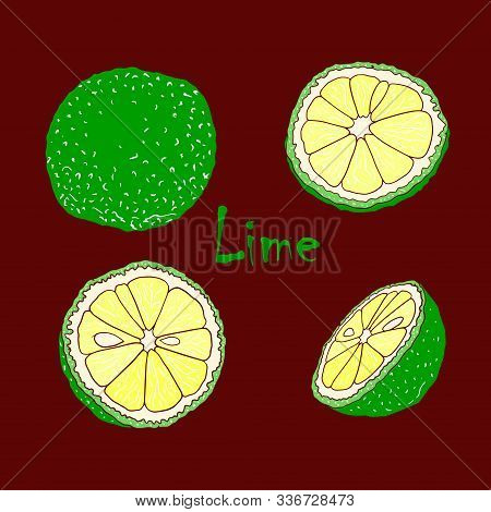 Vector Color Illustration With Lymes. Slice, Half, Whole Lime. Set Of Hand-drawn Doodle-style Elemen