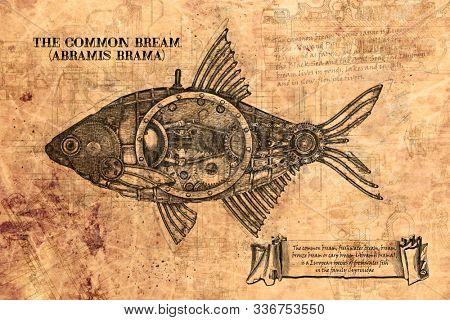 Steampunk style fish.  Vintage engraving freshwater bream (Abramis brama)
