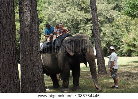 Williston, Florida-september 21, 2019: A Family Rides An Asian Elephant At The Annual Elephant Appre