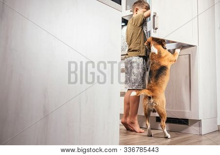 Little School Boy And Beagle Dog Trying To Find Somthing Eatable In Kitchen Fridge. Hunger And Starv