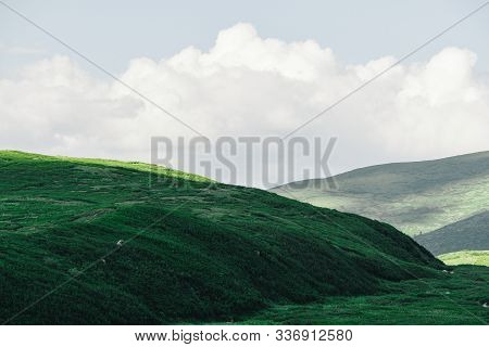 Gentle Green Hills. Mountain Valley For Pasture With Soft Slopes Covered With Green Grass