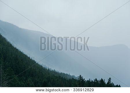 Soft Fog On Hillside. Haze On Mountain In Coniferous Forest After Rain