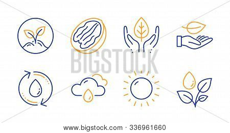 Leaf, Sunny Weather And Rainy Weather Line Icons Set. Refill Water, Fair Trade And Startup Signs. Pe