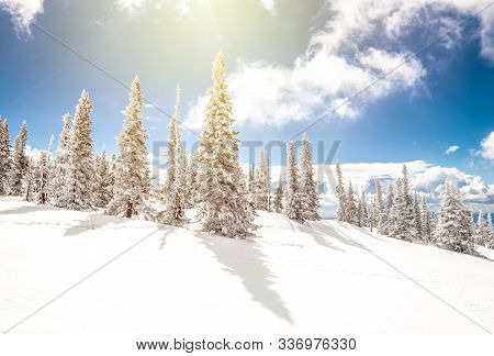 Sheregesh. Russia. Winter Mountain Landscape. Sunny Day. Coniferous Taiga Under Fresh White Snow On