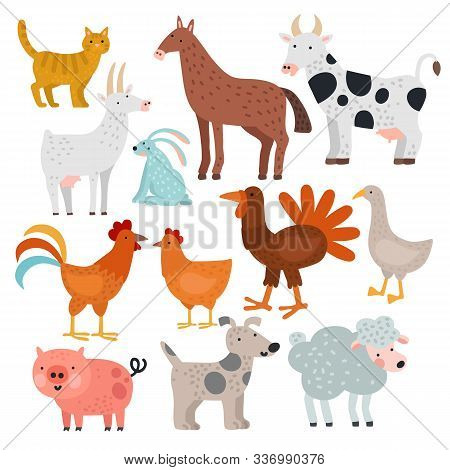 Farm Animals. Cow, Horse And Rabbit, Dog And Turkey, Sheep And Pig, Cock And Chicken, Goat And Cat,