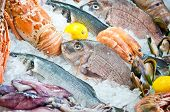 Fresh fish and seafood arrangement displayed on the market.Close-up poster