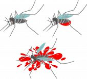 Vector clip-art of a grey mosquito sucking blood and crushed poster