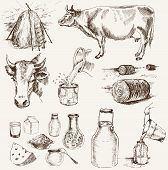 cow and milk products. set of vector elements poster