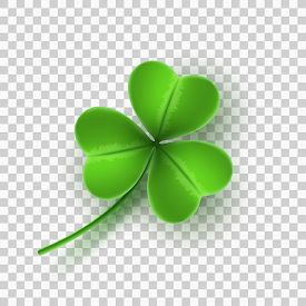 Realistic Green Clover Isolated On Transparent Background. Element For Saint Patricks Day. Vector Il