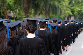 Rear View Of Group Of University Graduates In Black Gowns Lines Up For Degree In University Graduati