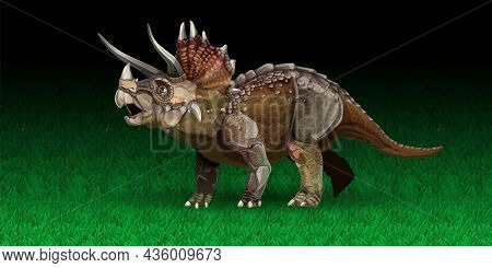 Triceratops Is A Genus Of Herbivorous Ceratopsid Dinosaur That Lived Late Maastrichtian Stage Of The
