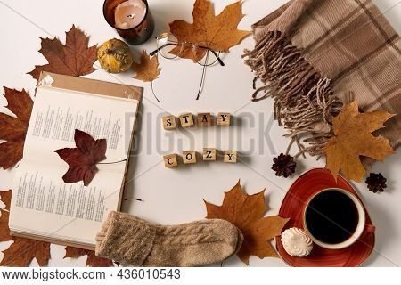 still life, season and objects concept - stay cozy words made of wooden toy blocks with letters or stamps and autumn staff on white background