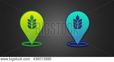 Green And Blue Cereals Set With Rice, Wheat, Corn, Oats, Rye, Barley Icon Isolated On Black Backgrou