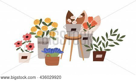 Blossomed Flowers And Foliage Plants In Pots, Vases And Baskets. Blooming Floral Bouquets Compositio