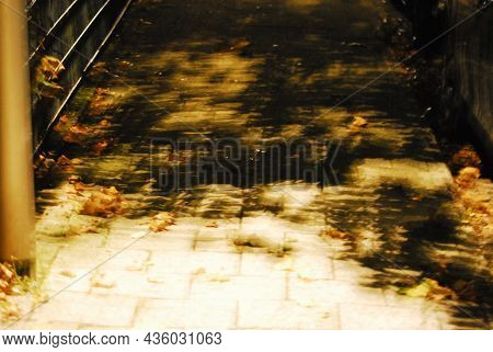 Blurred Pathway With Autumn Leaves At Night