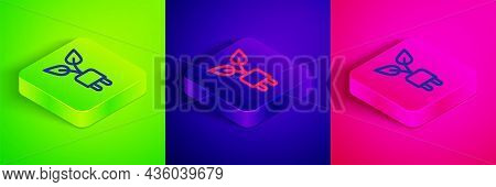 Isometric Line Electric Saving Plug In Leaf Icon Isolated On Green, Blue And Pink Background. Save E
