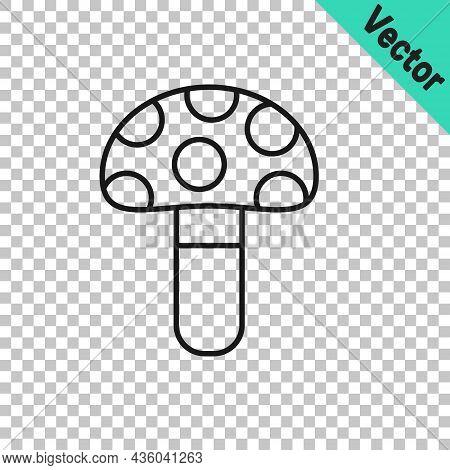 Black Line Psilocybin Mushroom Icon Isolated On Transparent Background. Psychedelic Hallucination. V
