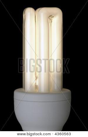 Energy Saving Lightbulb, Lit Against Black