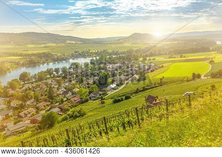 Scenic Fortified Gothic City Stein Am Rhein And Vineyard Terraces At Sunset With Aerial Cityscape. L