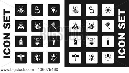 Set Spider, Beetle Bug, Chafer Beetle, Butterfly Net, Worm, Larva Insect And Spray Against Insects I