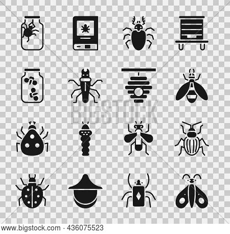 Set Butterfly, Chafer Beetle, Bee, Beetle Deer, Termite, Fireflies Bugs In Jar, Spider And Hive For