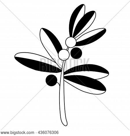 Branch Of Plant With Round Berries And Leaves. Vector Illustration. Outline. Black Linear Drawing Fo