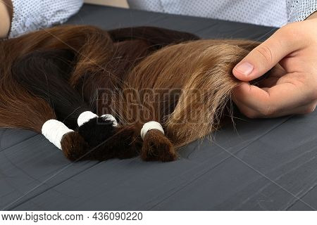 Man Holding In Hands Different Types Of Hair.blond, Red And Brown-haired Sections.hair Extensions Co