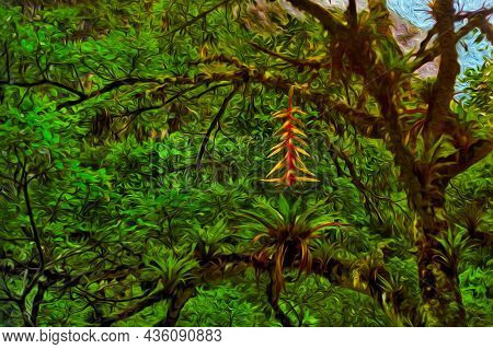 Tree Branches Covered By Lichen And Epiphytes In A Rainforest At The Peruvian Andes. The Largest Mou