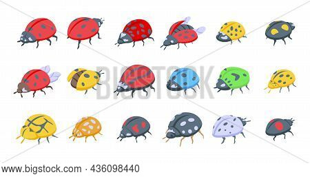Insect Ladybird Icons Set Isometric Vector. Child Fly. Insect Bug