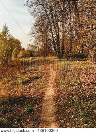 Walking Path Through Forest Lit With Sun. Fall Season. Alley At Countryside. Village Path Way Covere