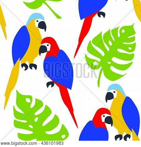 Seamless Vector Pattern Of Macaw Parrots And Monstera Leaves