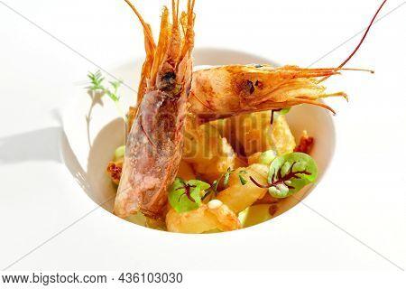 Hot appetizer - shrimp tempura with wasabi sauce in white plate. Gourmet dish - crispy prawns deep-fried. Starter from Seafood in restaurant menu. Fried shrimps in Japanese style. Ebi tempura