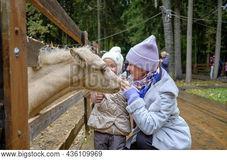 Mom And Daughter In The Petting Zoo Tenderly Caress The Muzzle Of A White Foal And Smile. Parents An