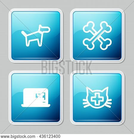 Set Line Dog, Crossed Bones, Clinical Record Dog Laptop And Veterinary Clinic Icon. Vector