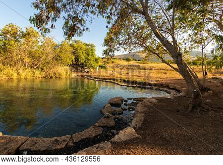 A Spring Of Fresh Water Called Ein Shokek, In The Valley Of The Springs In The Jordan Valley