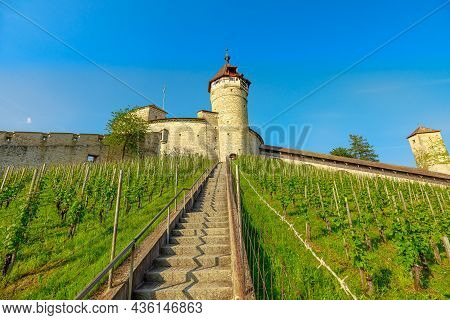 Munot Fortress With Its Vineyards In Schaffhausen Canton. Panoramic Terraced Vineyards Of Schaffhaus