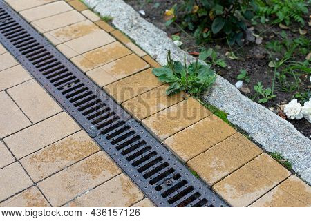 Grating Of Drainage System Rainwater In The Park At The Sidewalk From A Stone Yellow Paving Slabs. L