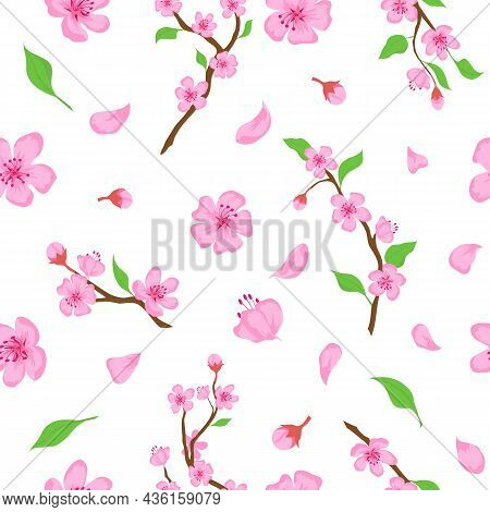 Pink Sakura Blossom Flowers, Petals And Branches Seamless Pattern. Japanese Spring Cherry Blooming P