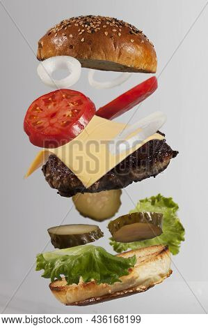 Levitating Fresh And Beautiful Sandwich Cheeseburger Ingredients