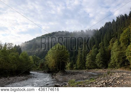 Picturesque View Of Beautiful River Flowing Near Forest In Morning