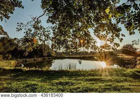 Beautiful Tree With Sunrays Reflected In Water.rural Summer Landscape With Trees Against Blue Sky An