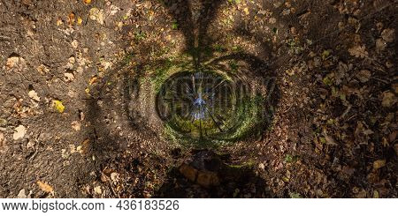 360 Degree Hyperbolic Tunnel Panorama Projection Of Spherical Panorama In Sunny Autumn Day In Pine F