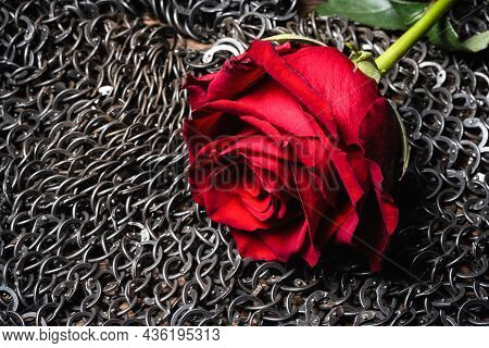 Red Rose Flower Close Up On The Iron Chain Mail Background.