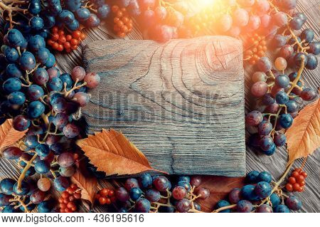 Bright Autumn Fruit Background Of Grapes And Lemongrass Berries. Top View. Place To Copy In The Form