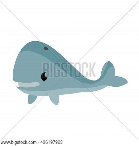 Cute Funny Whale. Marine Animal. Funny Blue Sperm Whale