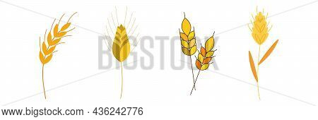 Happy Thanksgiving Cereal Autumn Retro Card. Fully Editable Eps10 Vector