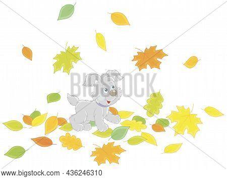 Cute Little Puppy Walking On Colorful Fallen Autumn Leaves Around A Park, Vector Cartoon Illustratio